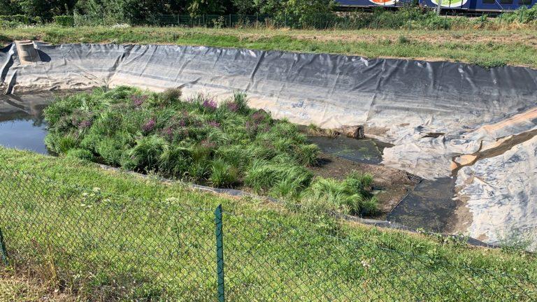 Radeau végétalisé pour le traitement des eaux de ruissellement - Sepur - BlueSET